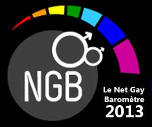 Le Net Gay Baromètre - Édition 2013